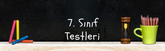 7. Sınıf Testleri